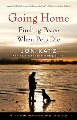 Going Home By Katz, Jon